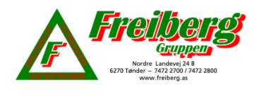 Freiberg Gruppen